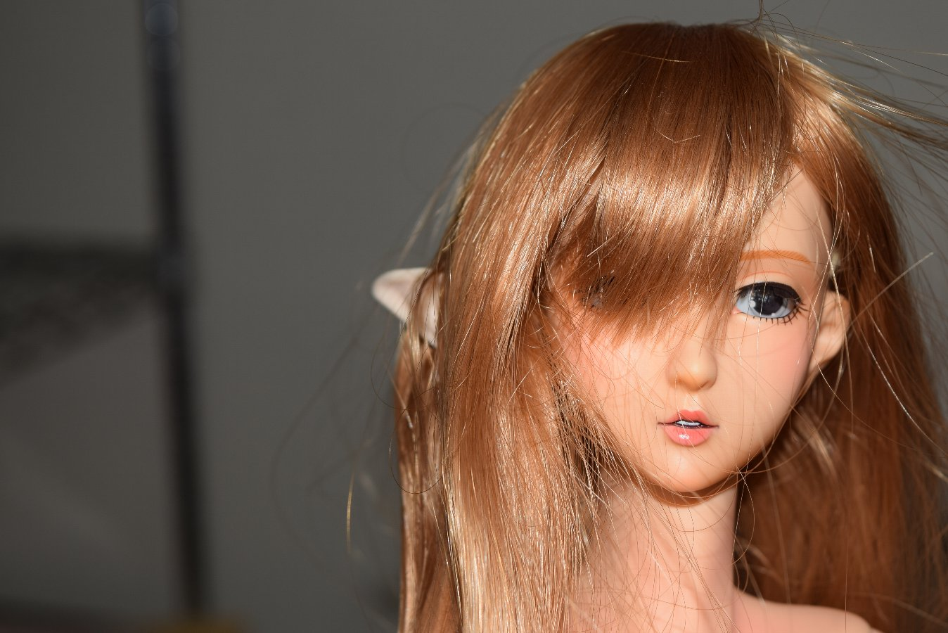 doll_012.jpg