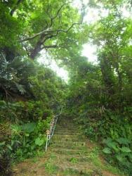 内金城嶽(うちかなぐすくたき)・大アカギ群