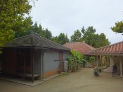 備瀬フク木並木通りの民家