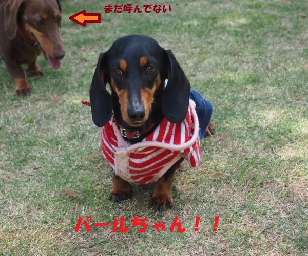 002_convert_20150507191807.jpg