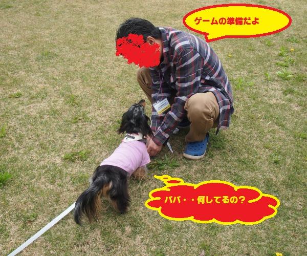 019_convert_20150423200757.jpg