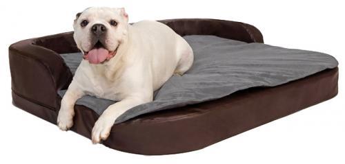 DoggyBed_Style_Plus.jpg