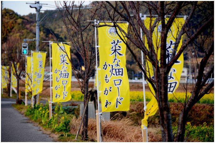 20150111kamogawa000.jpg
