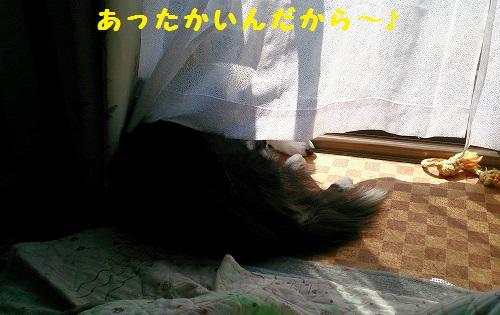 s-IMG_20150315_190637.jpg