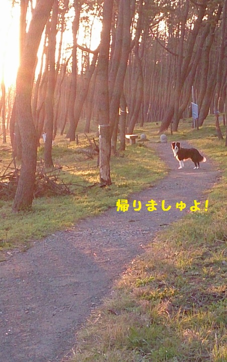 s-IMG_20150325_191914.jpg
