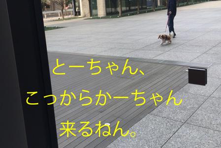 20150316-14.jpg