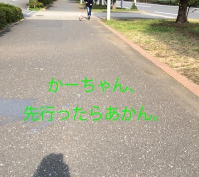 20150316-1.jpg