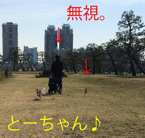 20150403-4.jpg