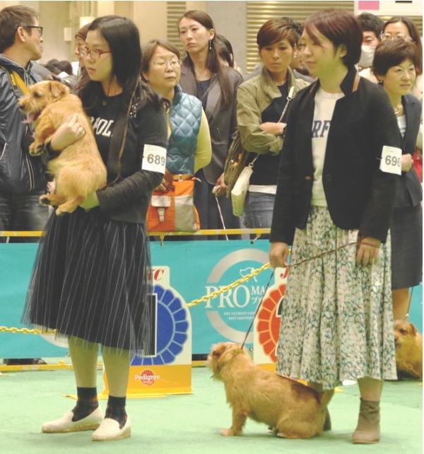 201544 ジャパンインター_9228