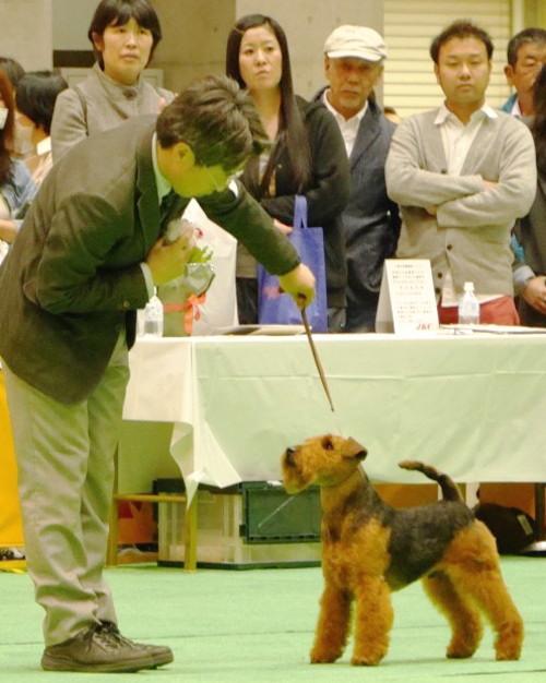 201544 ジャパンインター_6099
