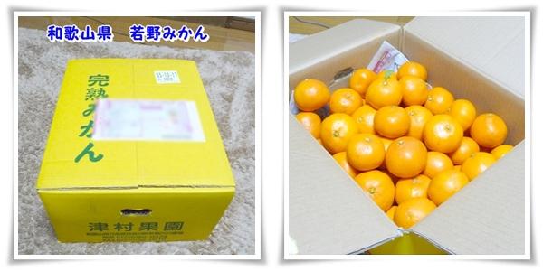 P1080678_2.jpg