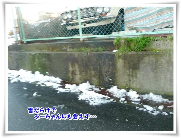 P1080742_1.jpg