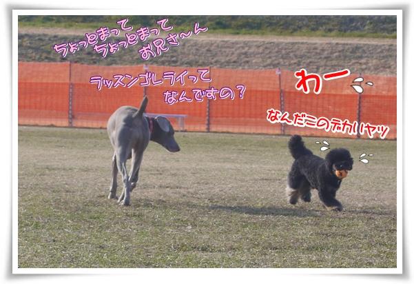 P1080748_2.jpg