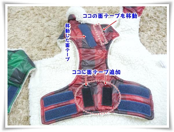 P1080810_1.jpg
