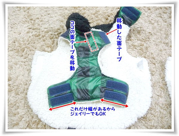 P1080811_1.jpg