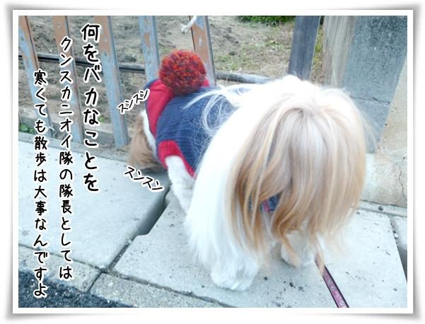 P1080908_1.jpg