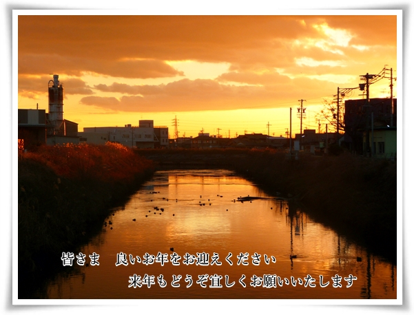 P1080940_1.jpg