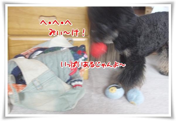 P1080946_1.jpg