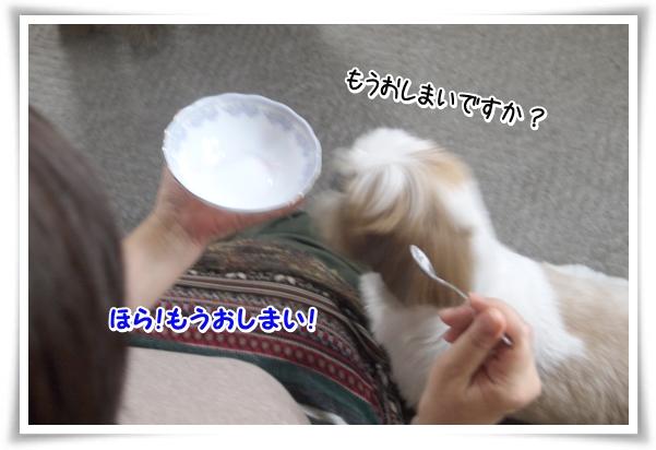 P1080970_1.jpg