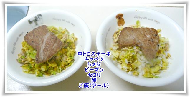P1090133_1.jpg