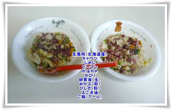 P1090316_1.jpg