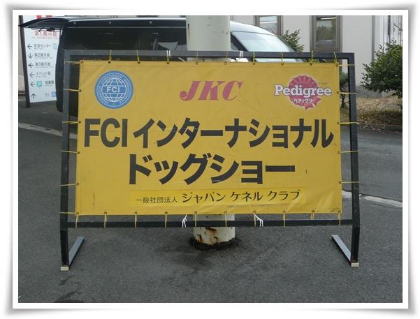 P1090749_1.jpg