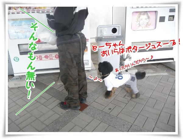 P1090788_1.jpg