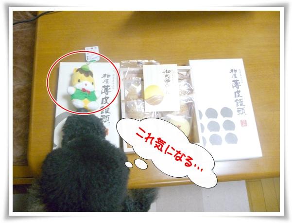 P1100211_1.jpg