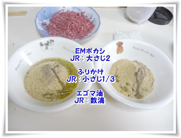 P1100390_1.jpg