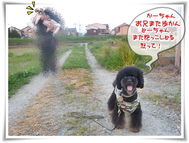 P1100644_1.jpg