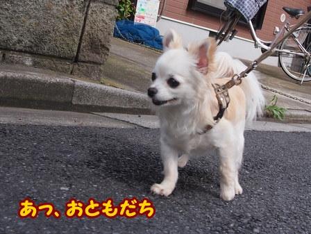 blog6218a.jpg
