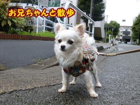 blog6284a.jpg
