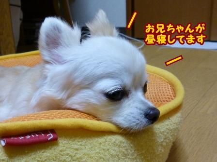 blog6334a.jpg