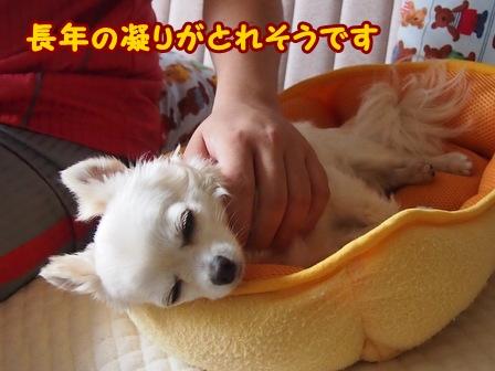 blog6350a.jpg