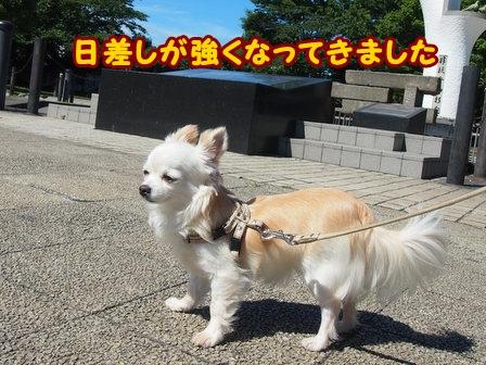 blog6386a.jpg