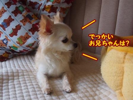 blog6402a.jpg