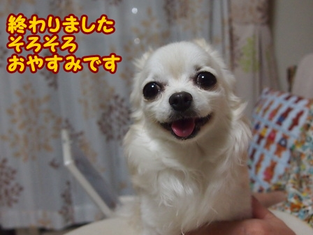 blog6440a.jpg
