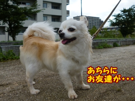 blog6475a.jpg
