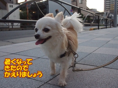 blog6502a.jpg