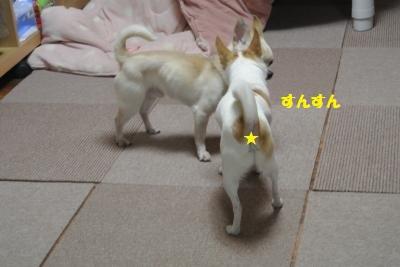 DSC_0591_convert_20150306111022.jpg