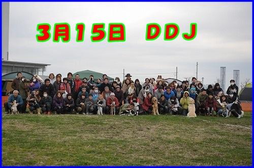 DSC_5330.jpg