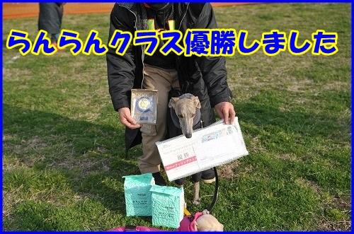 DSC_5380_201503222353523b5.jpg
