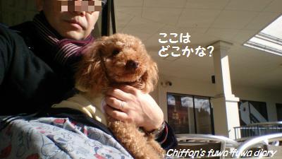 DSC_0547_convert_20150124125344.jpg