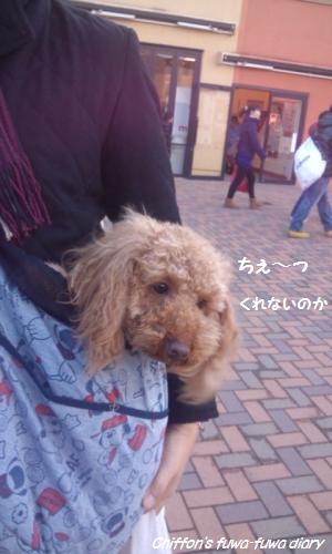 DSC_1108_convert_20150124131350.jpg