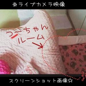 20150305234953c2f.jpg