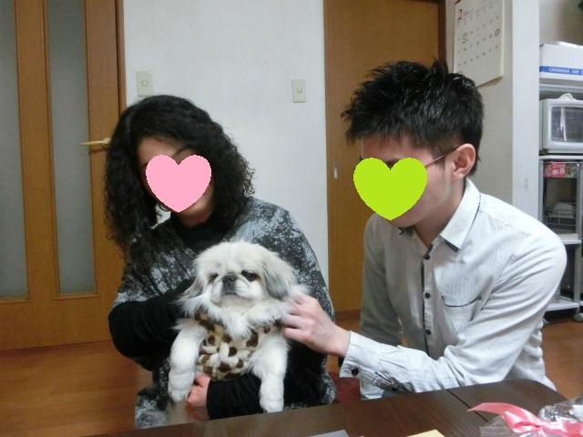2015,2,09アーデンと雪ちゃん 028