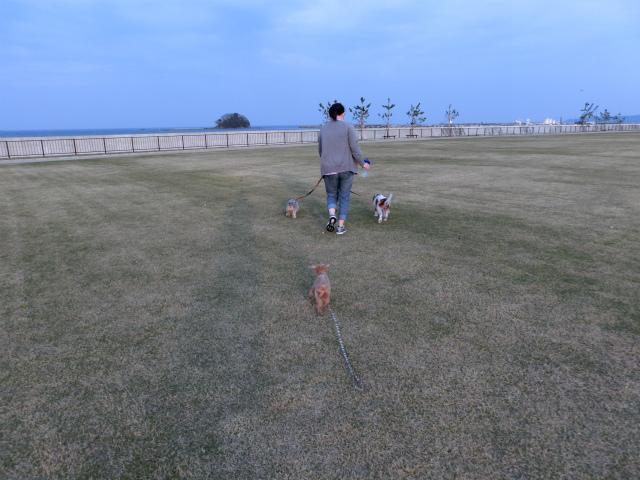2015,4,28 氷見車中泊コンデジ 050