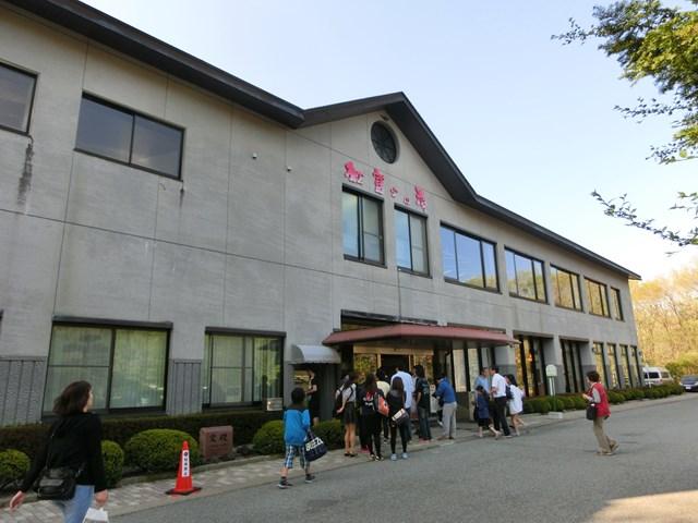 s-2015,5,5 伊豆と富士山芝桜 063