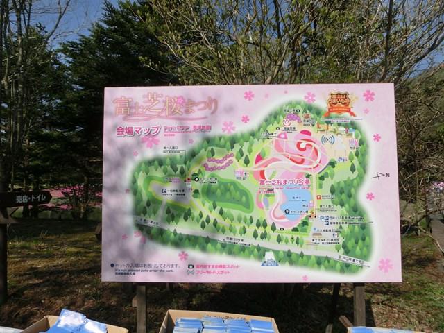 s-2015,5,5 伊豆と富士山芝桜2 017