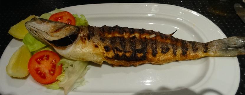 チュニジア食スズキ2